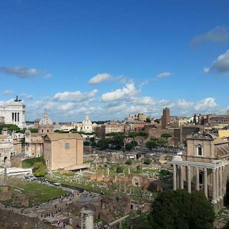 Forum with Palatine Hill