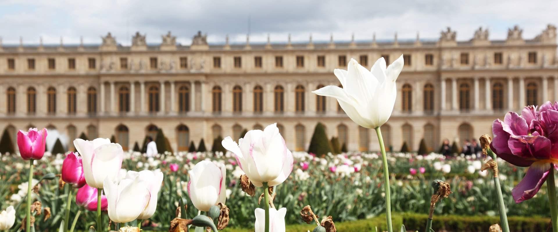 Versailles Palace & Garden Tour from Paris - City Wonders