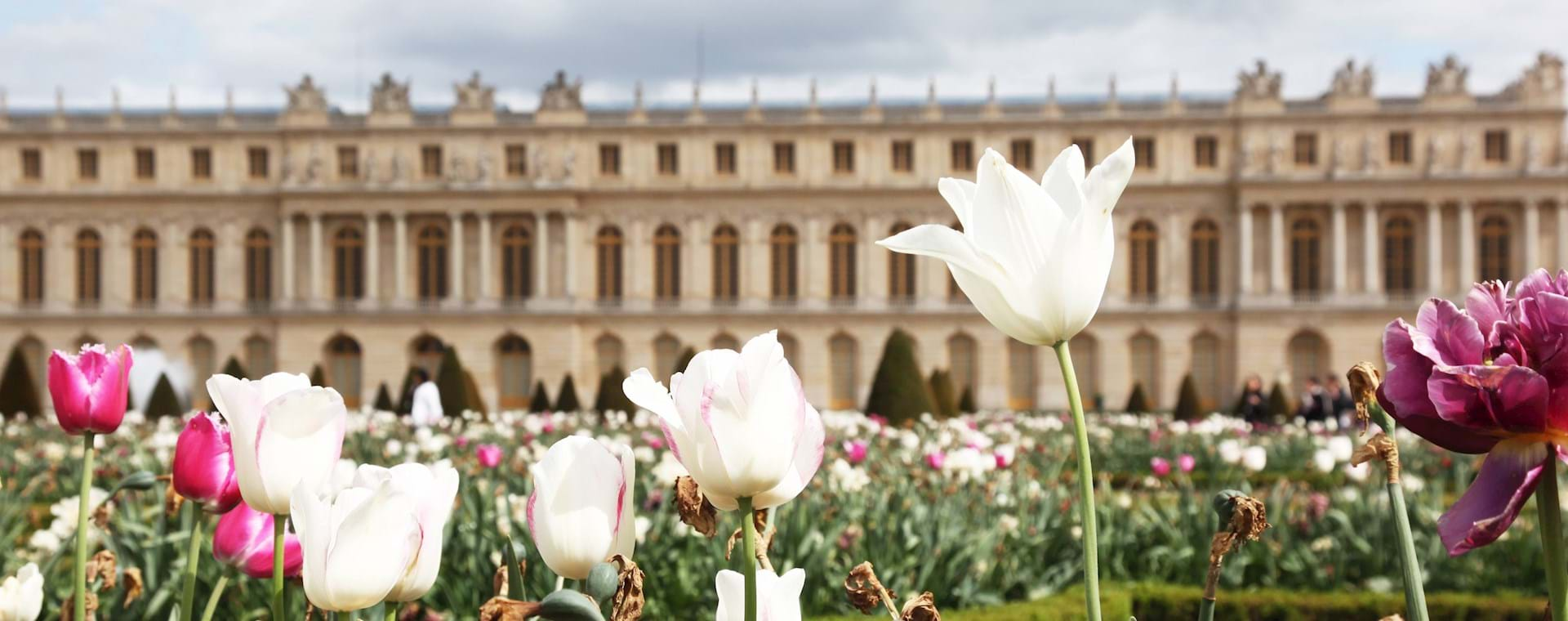 Versailles Palace & Gardens Tour with Fountain Show from Paris