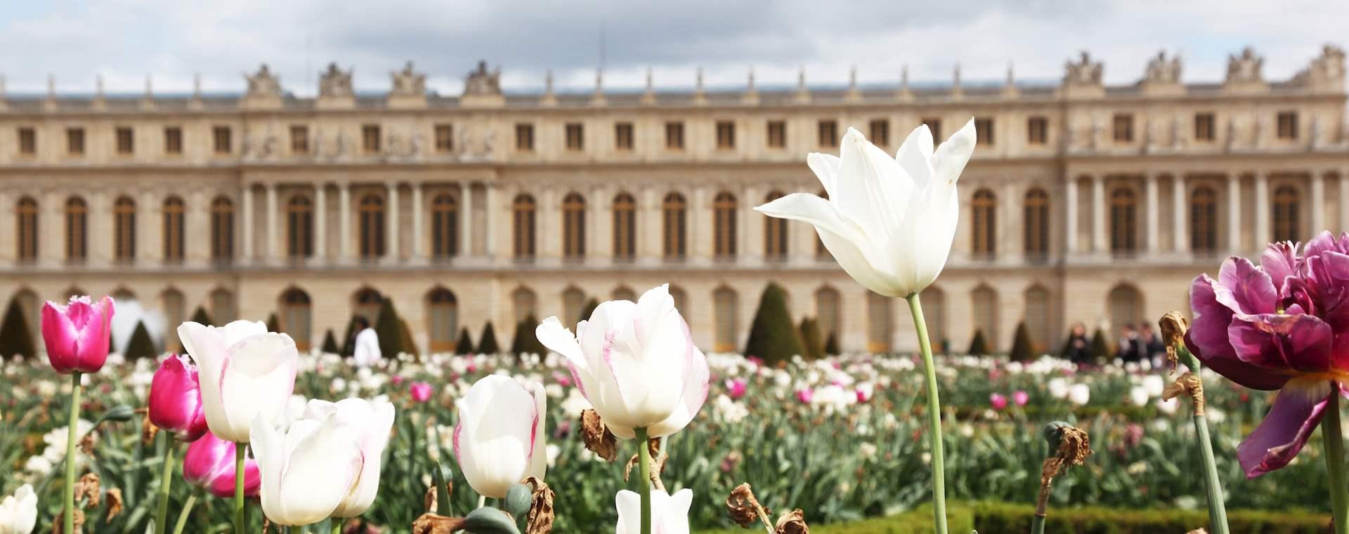 Versailles Palace & Gardens and Louvre Combo Tour