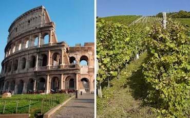ComboSaver Colosseum Frascati