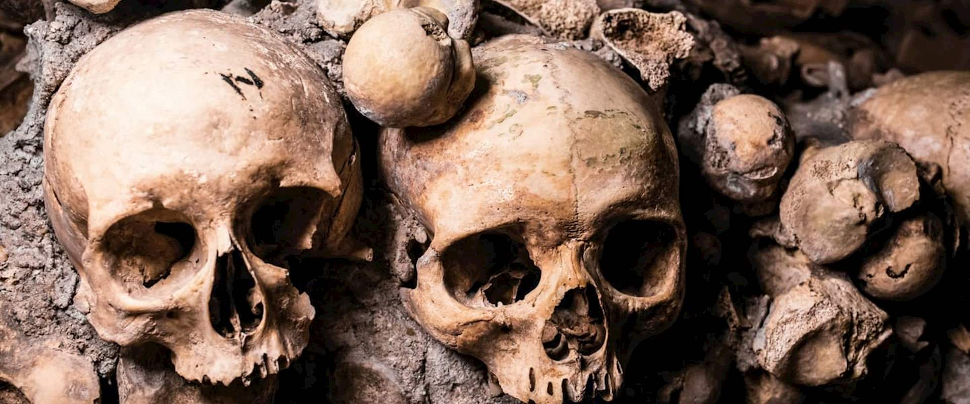 Catacombs Skip The Line Tour