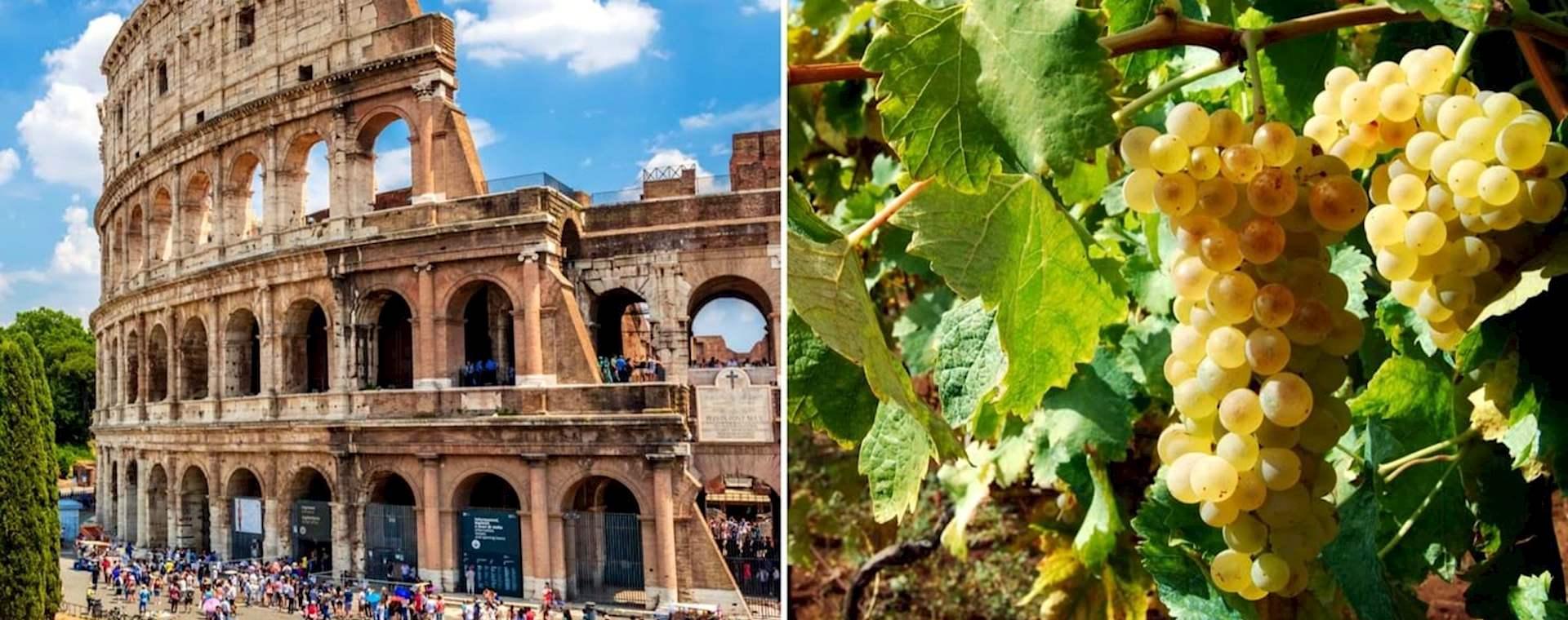 Full-Day Combo: Colosseum Tour & Frascati Vineyard Wine Tasting