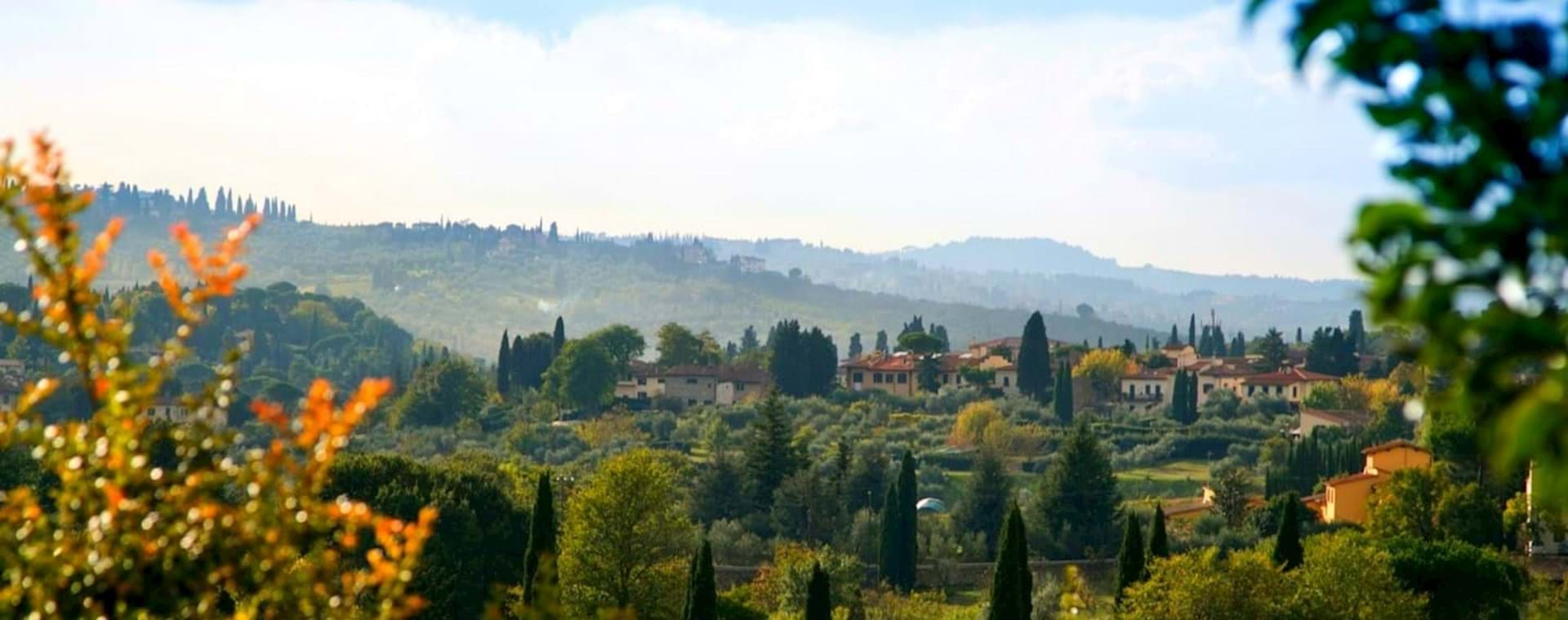 Florence Vineyard Tour with Wine Tasting & Authentic Tuscan Dinner