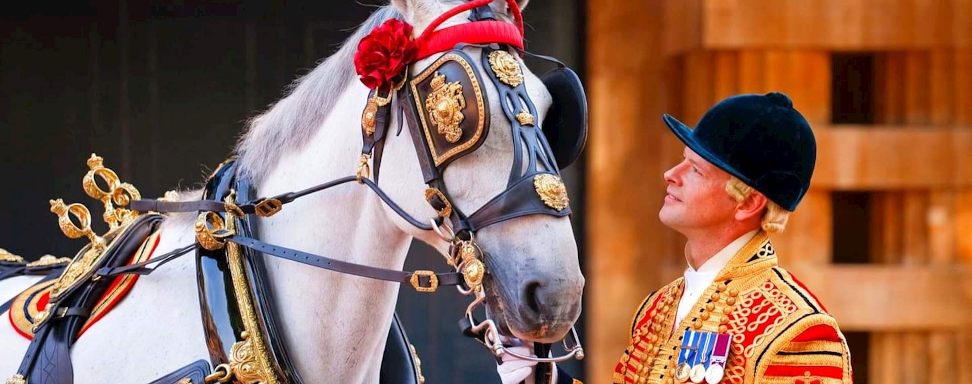 Royal Mews and Changing the Guard and Afternoon Tea