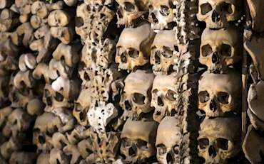 Skeletons in capuchin crypt