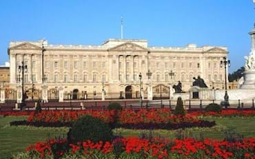 Buckingham Palace flower view
