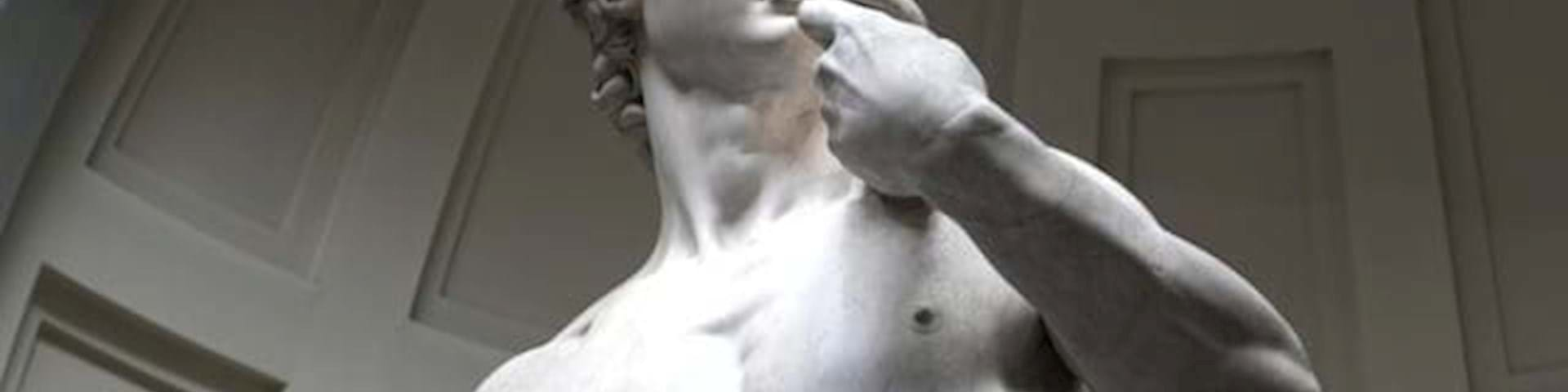 Michelangelo's David Tours
