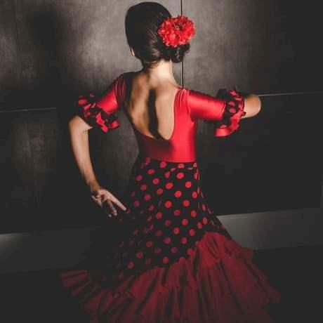 Professional Flamenco Dancer performing traditional Spanish dance