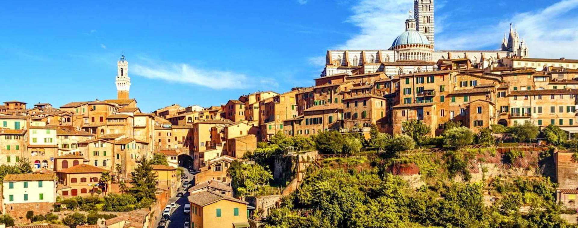 Private Day Trip: Siena & San Gimignano Tour from Florence