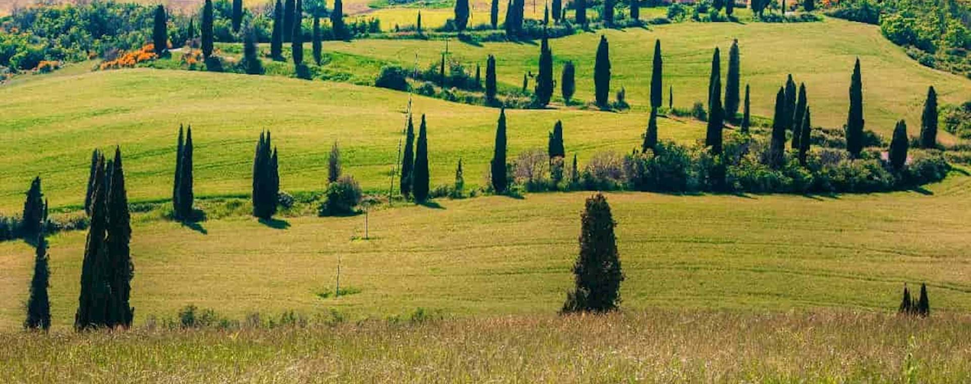 Stunning view of the Tuscany countryside