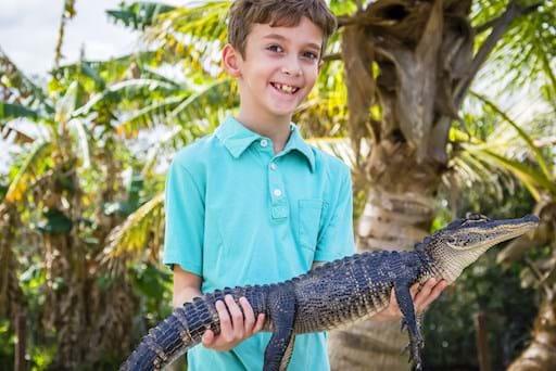 Happy kid holding an alligator