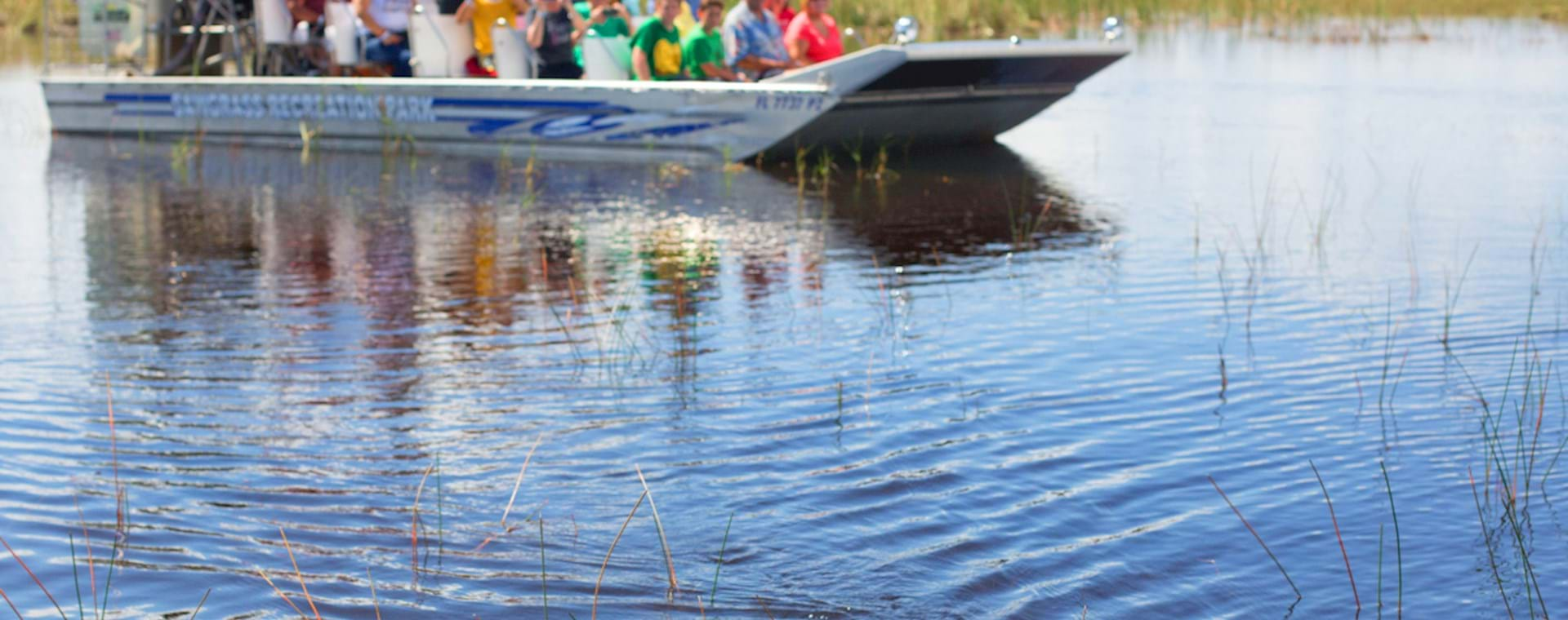 people watching alligators from an airboat