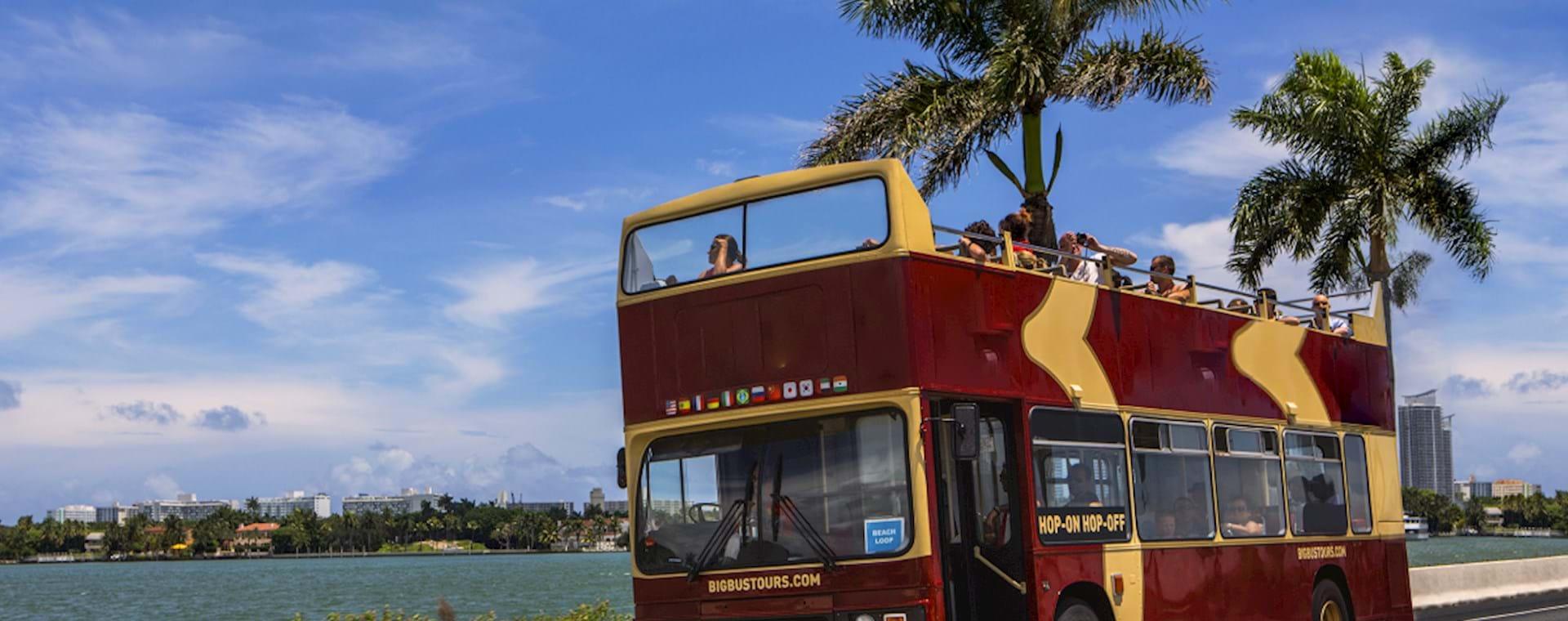 Bus trip South Beach miami