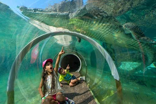 Girl in a underwater tunnel at the Miami zoo