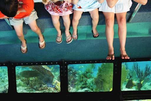 Kids enjoying the view under the ocean
